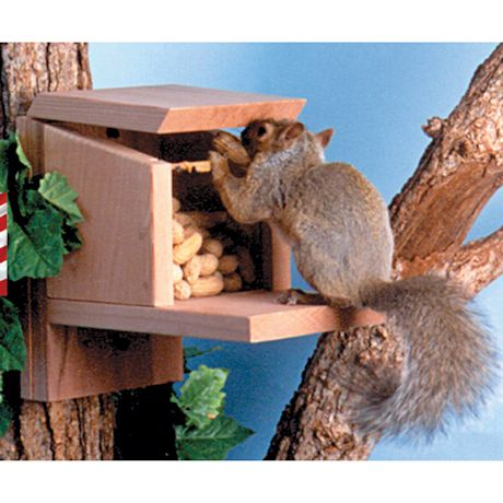 Squirrel Munch Box