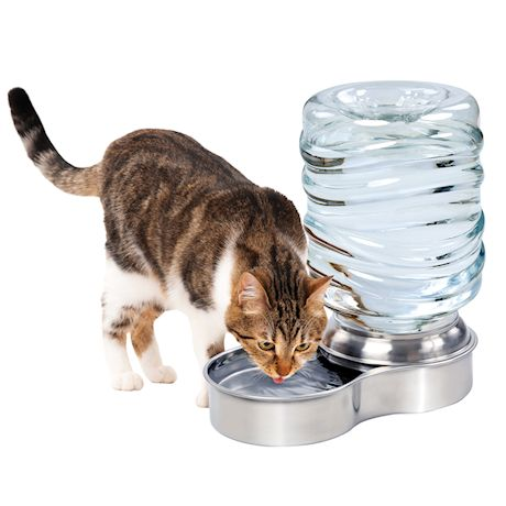 Etna Gravity Feed Pet Waterer Bowl - Stainless Steel Cat and Dog Water Dish Station Holds 1 Gallon, BPA-Free, Non Skid Bottom