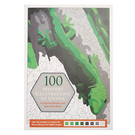 100 Mystery Illustrations to Unveil Book