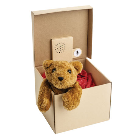 Recordable Message Gift Box