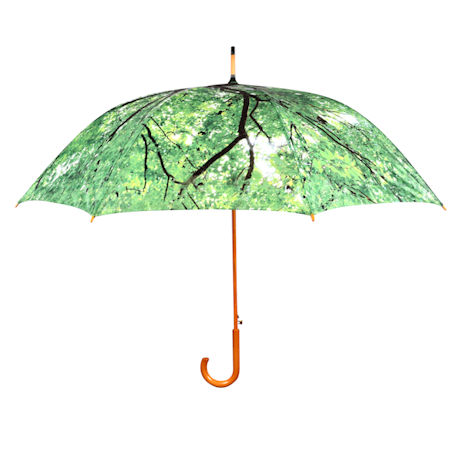 Tree Canopy Umbrella