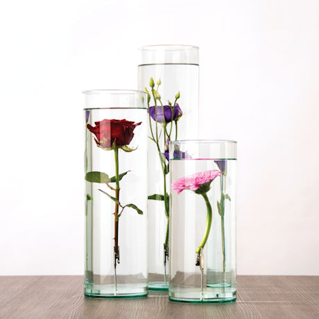 Submerged Flowers Vases