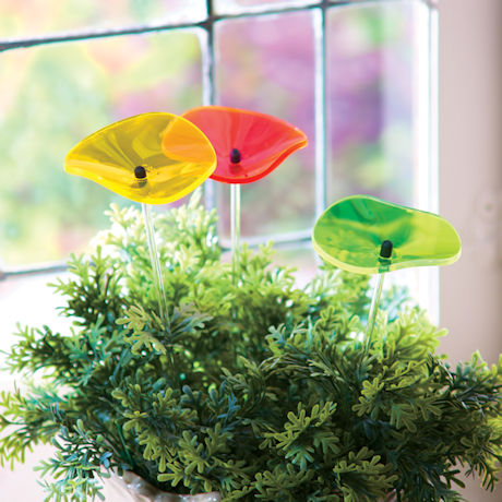 Poppy Sun Catchers