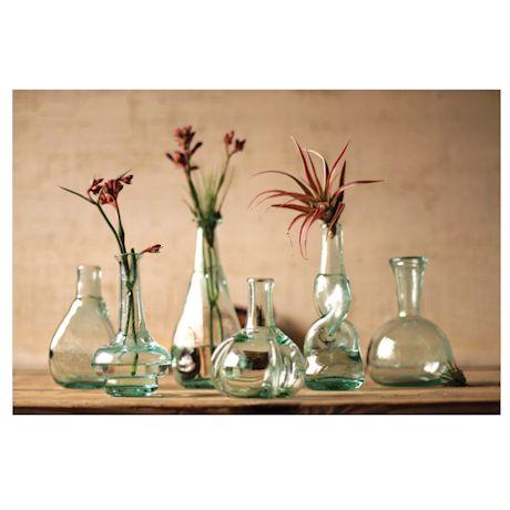 Bottle Bud Vases Set