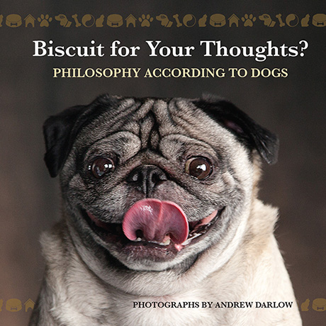 Biscuit For Your Thoughts?