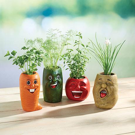 Veggie Herb Pots - Set of 4