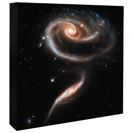 "Hubble Image Canvas Print: A Rose Made of Galaxies- 36"" Square"