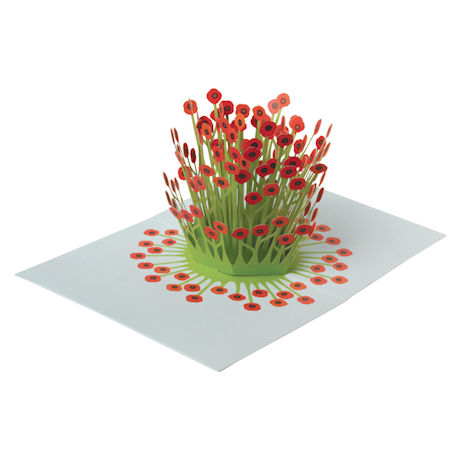Blooming Poppies Pop-Up Greeting Cards - Set of 6