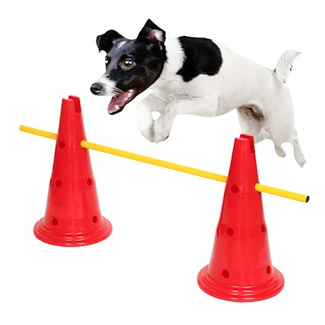 Etna Dog Agility Hurdle Set - 6 Canine Obedience Training Exercise Cones with 3 Collapsible Metal Bars - Adjustable Height