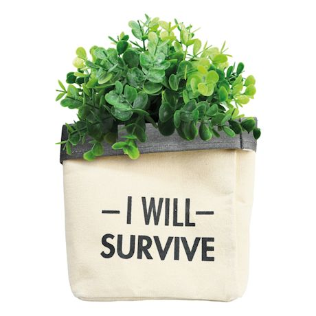 I Will Survive Canvas Plant Holder