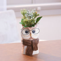 Bespectacled Owl Pot