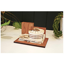 Frank Lloyd Wright® Guggenheim Museum Architectural Model Kit