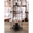 "Circleware Birdcage Metal Desk, Table, or Hanging Lamp - Cordless Accent Light with LED Bulb - 11"" High"