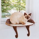 Etna Window Mount Cat Perch - Small Pet Window Seat Cat Ledge, Leopard Print Padded Cat Bed Sill, Removable Washable Cover, Holds 20-35 Pound Animals
